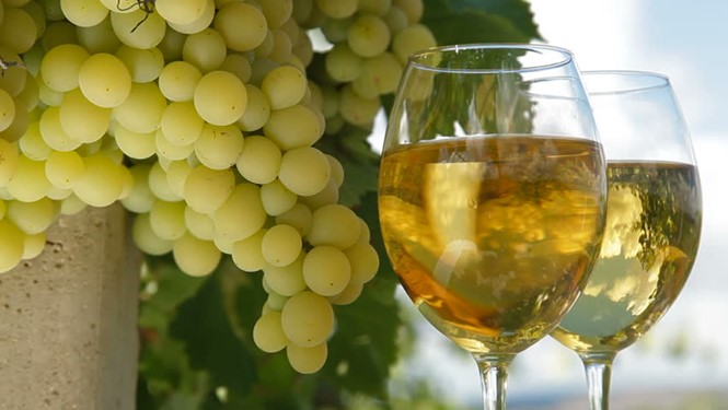 White wine grape.jpg