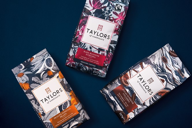 01_Taylors of Harrogate_Pearlfisher_Origins Coffee Range_Digital.jpg